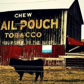 R A W M   - Mail Pouch-4