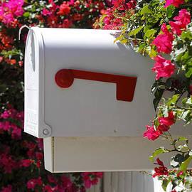 Rudy Umans - Mailbox