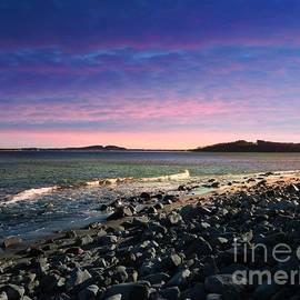 Marcia Lee Jones - Maine Coastline #1