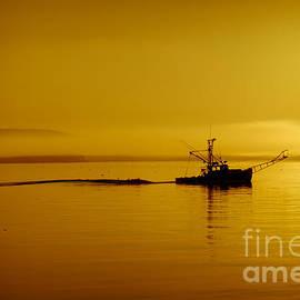 David Rucker - Maine Sunrise