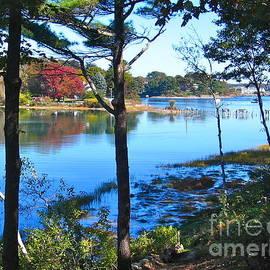David Davies - Maine Waterfront