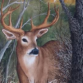 Gary McDonnell - Majestic Buck