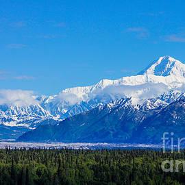 Jennifer White - Majestic Mt McKinley