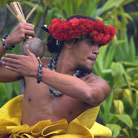 Lori Seaman - Male Hula Dancer With Small Gourd Instrument