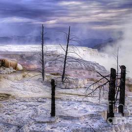 Inge Riis McDonald - Mammoth Hot Springs Yellowstone