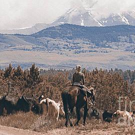 Janice Rae Pariza - Mancos Cowgirl Cattle Drive