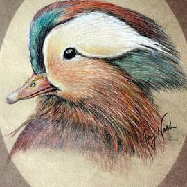 Joey Nash - Mandarin Wood Duck