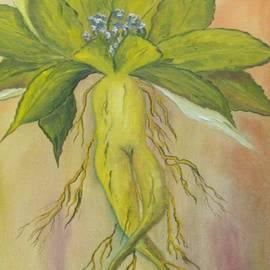 Conor Murphy - Mandrake