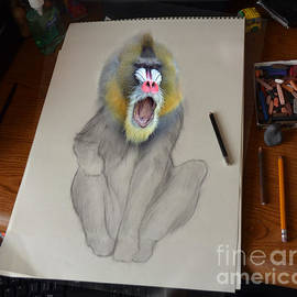 Jim Fitzpatrick - Mandrill Drawing Coming Alive