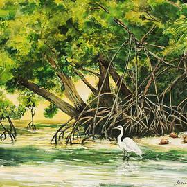 Janis Lee Colon - Mangrove Morning