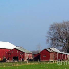 Tina M Wenger - Many Barns