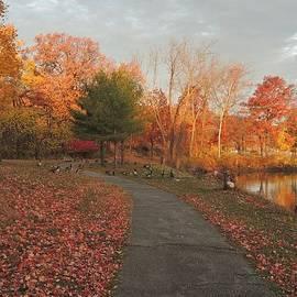 Sue Rosen - Many Paths We Choose