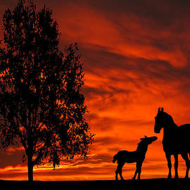 David Dehner - Mare and Foal Sunset Silhouette Series