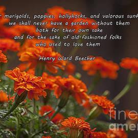 Janice Rae Pariza - Marigold Gardens
