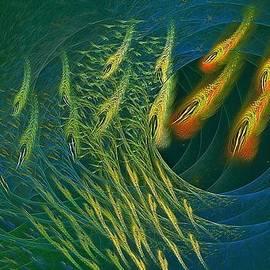 Doug Morgan - Marine Sanctuary Fractal