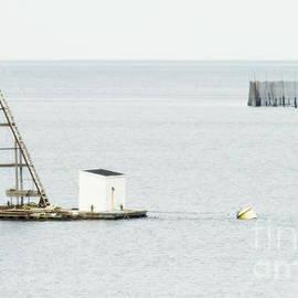 Nina Stavlund - Maritime Dreams...