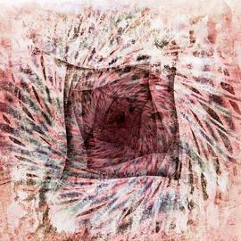 Florin Birjoveanu - Mars im Quadrat
