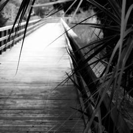 Laurie Pike - Marsh Boardwalk
