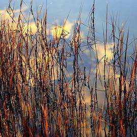 Karen Wiles - Marsh Mellow Clouds