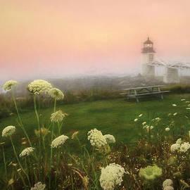 Lori Deiter - Marshall Point at Sunrise