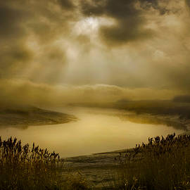 Adrian Campfield - Marshland Secrets
