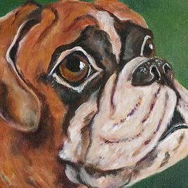 Lynda  Cook - Marvin the Bull Dog