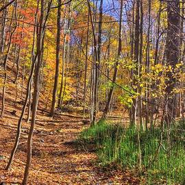Michael Mazaika - Maryland Country Roads - Autumn Colorfest No. 3 - Catoctin Mountains Frederick County MD
