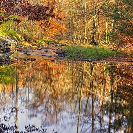 Michael Mazaika - Maryland Country Roads - Moments for Reflection No. 1 - Cunningham Falls State Park Autumn