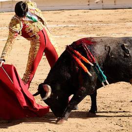Clarence Alford - Matador and Bull