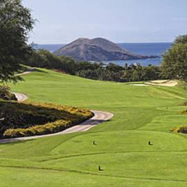 Sheldon Kralstein - Maui Golf Course Landscape