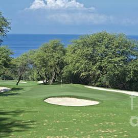 Sheldon Kralstein - Maui Golf Landscape