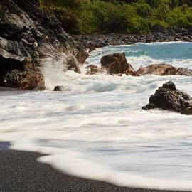 Janice DeLawter - Maui