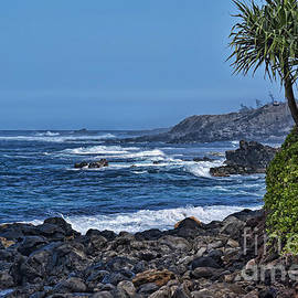 Sheldon Kralstein - Maui North Shore