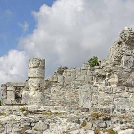 Charline Xia - Mayan Ruins