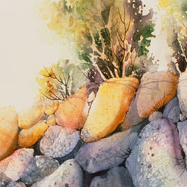 Teresa Ascone - McHugh Creek Impression