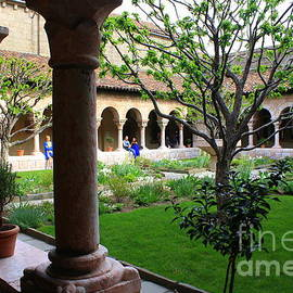 Photographic Art and Design by Dora Sofia Caputo - Medieval Garden at The Cloisters New York