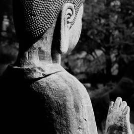 Nicholas  Pappagallo Jr - Meditate