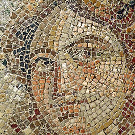 Jean Hall - Medusa Mosaic