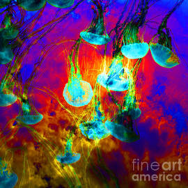 Wingsdomain Art and Photography - Medusas On Fire 5D24939 square