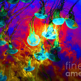 Wingsdomain Art and Photography - Medusas On Fire 5D24939