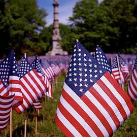 Rona Black - Memorial Day Flag Garden