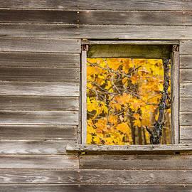 Penny Meyers - Memories of Autumn