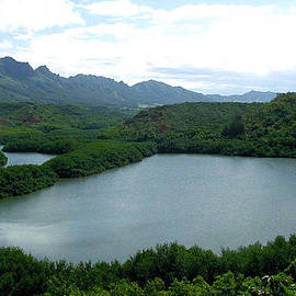 Jean Hall - Endangered Menehune Fishpond