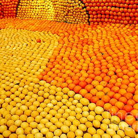 France  Art - Menton Citrus Festival