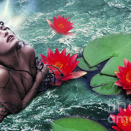 Renata Ratajczyk - Mermeid and Water Lilies
