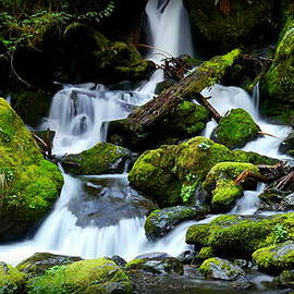 Christopher Fridley - Merriman Falls