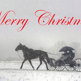 Gene Walls - Merry Christmas Buggy Ride - Card