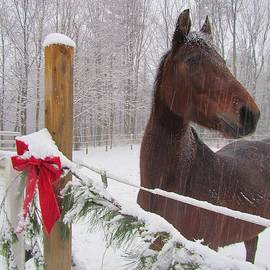 Elizabeth Dow - Merry Christmas