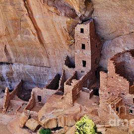 Janice Rae Pariza - Mesa Verde Alcove Dwellers