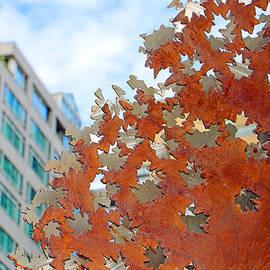 Brad Walters - Fall Leaves